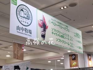 JR高島屋 大北海道展のパフェ